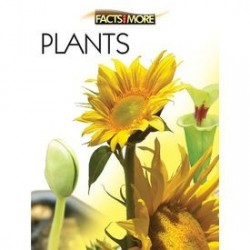 Facts and More: PLANTS